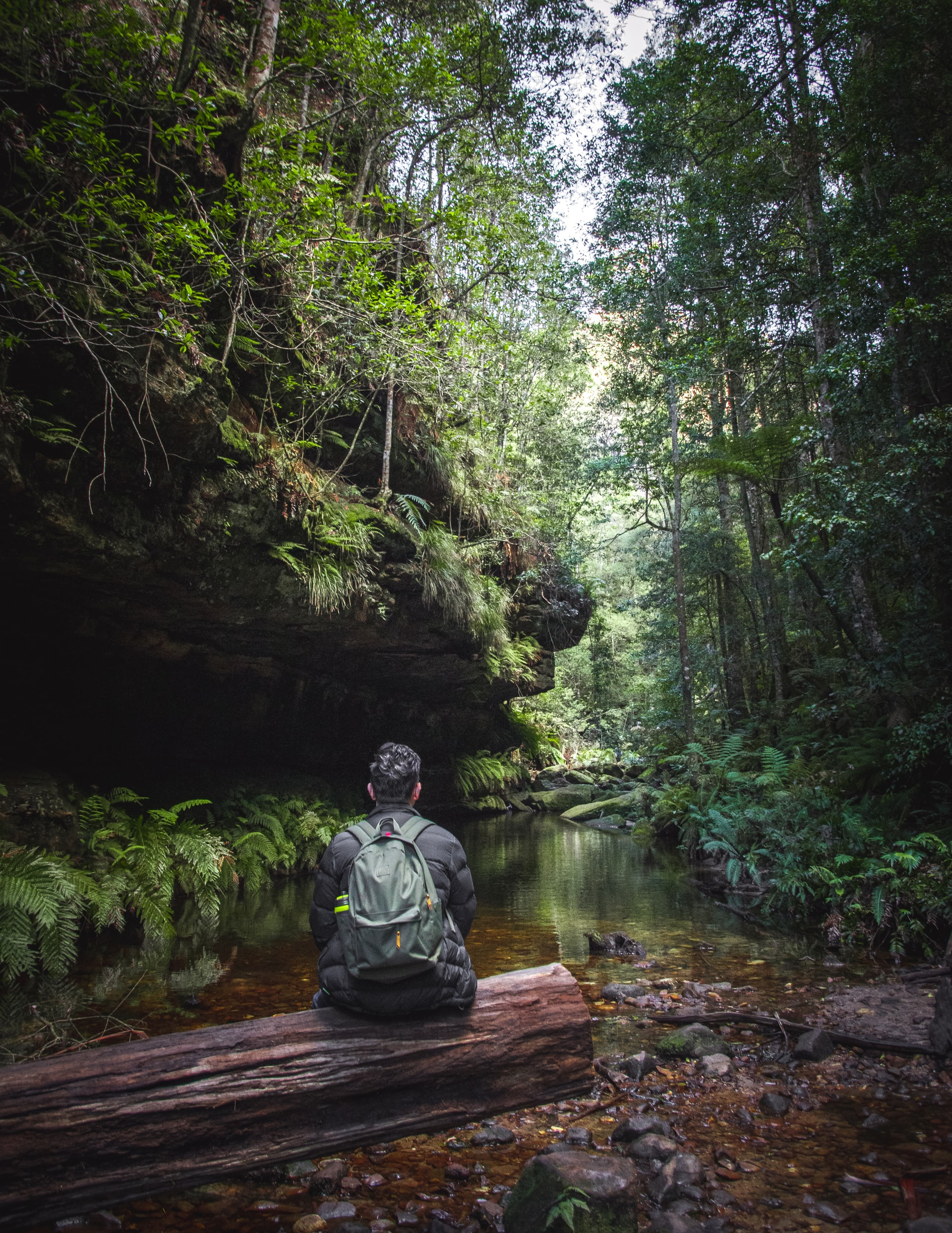 A person wearing a backpack sits on a log over a lushly forested river, looking up the river